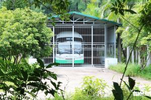 Xe buýt điện gần chục tỉ 'nằm ụ' vì trục trặc trên đảo Cát Bà