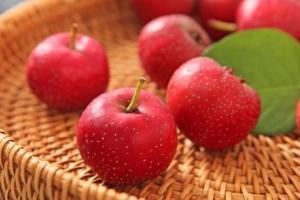 Tại sao táo gai được xem là loại quả 'bậc thầy về sức khỏe'?
