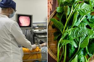 6 loại rau người bị đau dạ dày nên ăn thường xuyên, BS nói: Dần dần không cần uống thuốc